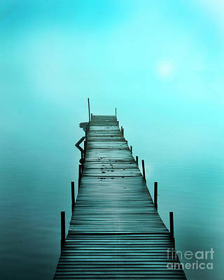 Photograph - Blue Sunrise by Gina Signore
