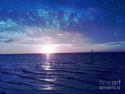 Photograph - Blue Sunset by Vicky Tarcau