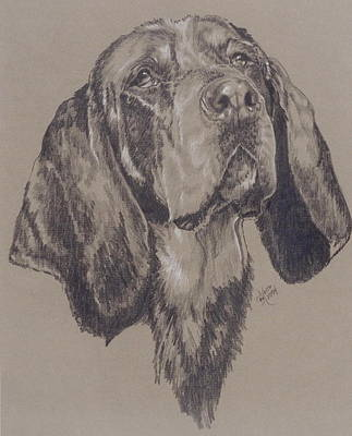 Purebred Dogs Drawing - Blue Tick Coonhound by Barbara Keith