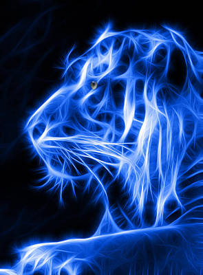 Blue Tiger Art Print by Shane Bechler