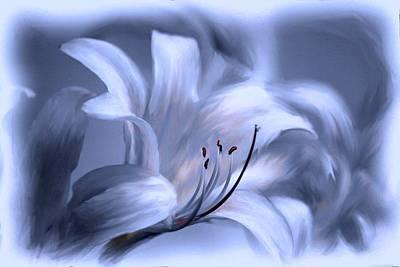 Blue Tinted Swirl Lily Art Print by Jim  Darnall