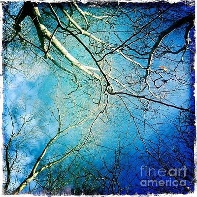 Digital Art - Blue Tones  by Delona Seserman
