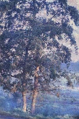 Photograph - Blue Trees. Monet Style by Jenny Rainbow