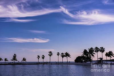 Blue Tropics Art Print