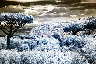 Photograph - Blue Valley by John Rizzuto