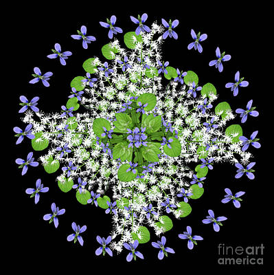 Wall Art - Photograph - Blue Violet Galaxy by Karen Jordan Allen