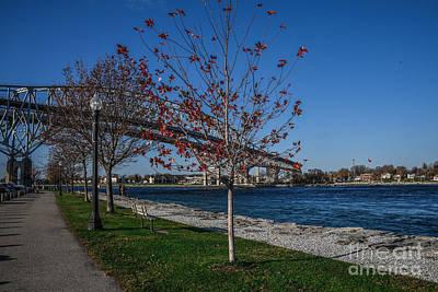 Photograph - Blue Water Bridge In Fall by Grace Grogan