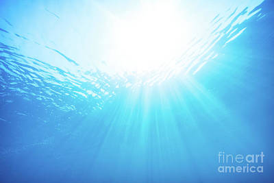 Photograph - Blue Water Underwater Background by Anna Om