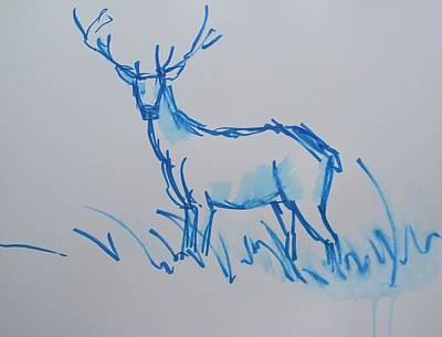Drawing - Blue Watercolor Brushed Line Drawing Of A Stag With Antlers by Mike Jory