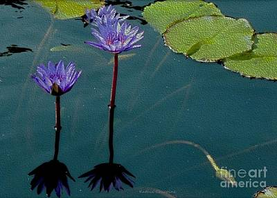 Photograph - Blue Waterlilies by Kathie Chicoine