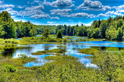 Blue Waters Of The Moose River Art Print by David Patterson