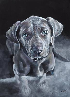 Painting - Blue Weimaraner by John Neeve