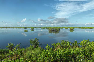 Photograph - Blue Wetlands by John M Bailey
