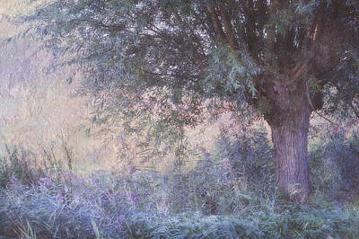 Photograph - Blue Willow. Monet Style by Jenny Rainbow