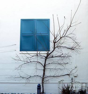 Photograph - Blue Window by Marcia Lee Jones