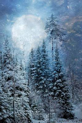 Mixed Media - Blue Winter by Diane Paquin