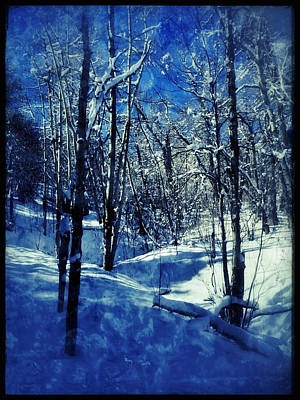 Digital Art - Blue Winter II by Dan Miller