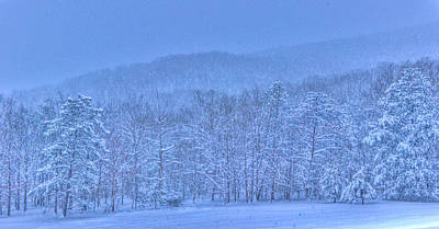 Photograph - Blue Winter by Jonny D