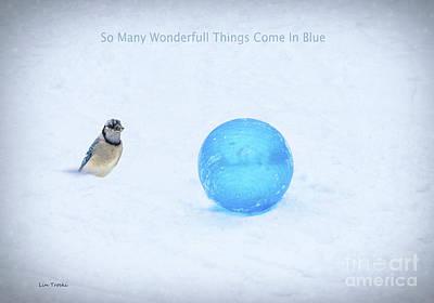 Bluejay Mixed Media - Blue Winter by Linda Troski