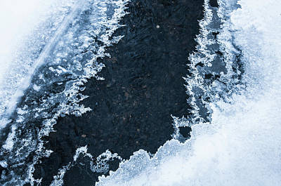 Photograph - Blue Winter Patterns 1. Frozen Nature by Jenny Rainbow