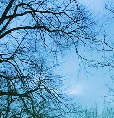 Photograph - Blue Winter Sky by Mireille Roc