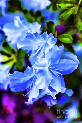 Digital Art - Blue Wonder by Rick Bragan