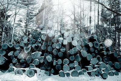 Soft Digital Art - Blue  Wood by Mark Ashkenazi