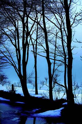 Blue Woods Art Print by Karol Livote