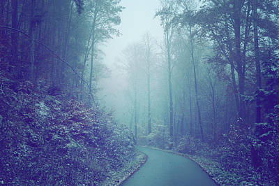 Photograph - Blue Woods. Misty Way by Jenny Rainbow