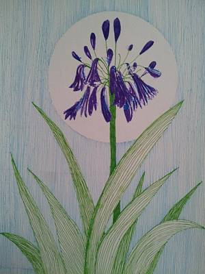 Conservatory Drawing - Bluebell Flower by William Douglas