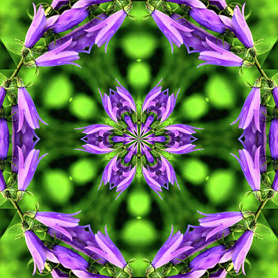 Digital Art - Bluebell Kaleidoscope by Aliceann Carlton