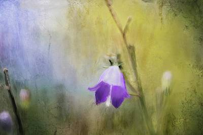 Painting - Bluebell by Mandy Tabatt
