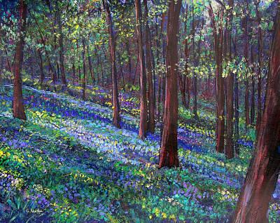 Bluebell Woods Print by Li Newton