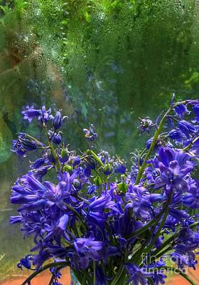 Photograph - Bluebells In My Garden Window 4 by Joan-Violet Stretch