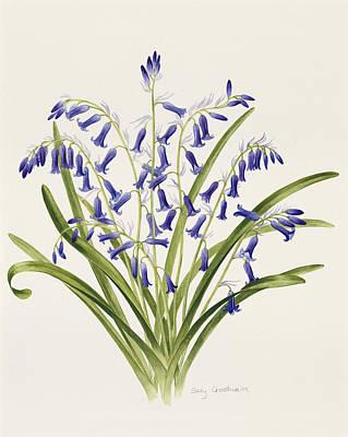 Blue Flowers Drawing - Bluebells by Sally Crosthwaite