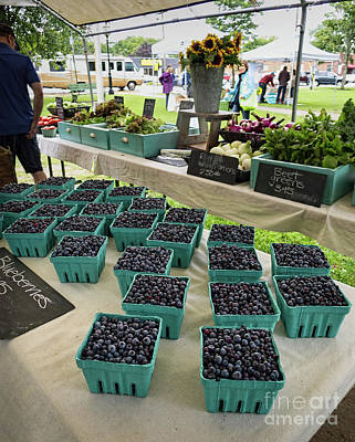 Photograph - Blueberries, Farmers Market, Brunswick, Maine #60229 by John Bald
