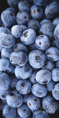 Photograph - Blueberries Foodie Phone Case by Edward Fielding