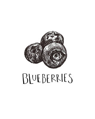 Blueberry Drawing - Blueberries by Madeline Lee