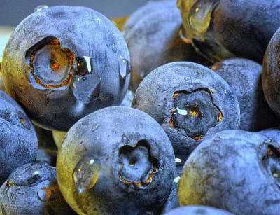 Photograph - Blueberries by Peg Runyan
