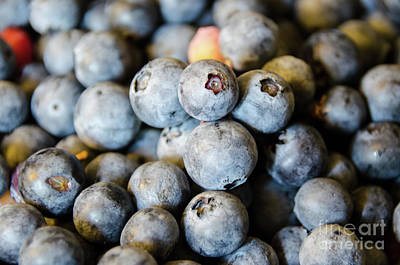 Photograph - Blueberry by Andrea Anderegg