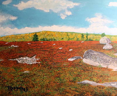Blueberry Barrens Painting - Blueberry Barrens by William Tremble