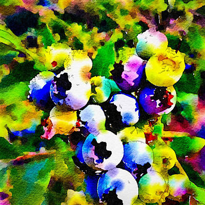 Photograph - Blueberry Bright by Ronda Broatch