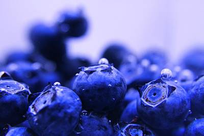 Photograph - Blueberry Bubbles by Mandy Shupp