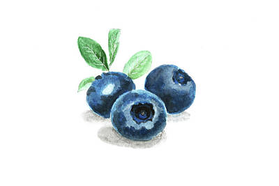 Painting - Blueberry by Masha Batkova
