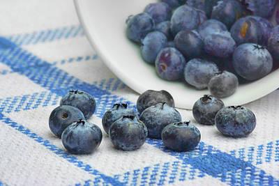 Photograph - Blueberry - Still Life by Nikolyn McDonald