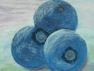 Blueberry Drawing - Blueberry Trio by Cheryl Albert