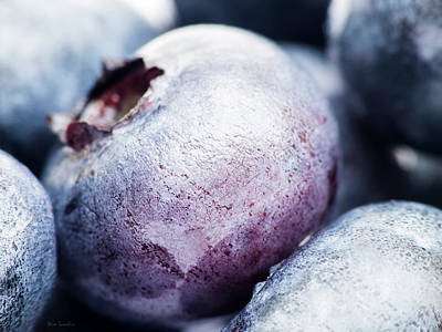 Photograph - Blueberry by Wim Lanclus