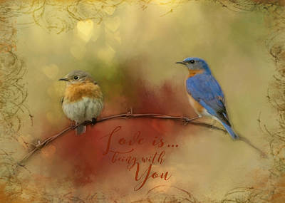Photograph - Bluebird Happiness by TnBackroadsPhotos