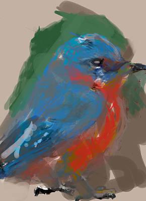Bluebird Digital Art - Bluebird by James Thomas