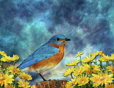 Bluebird Mixed Media - Bluebird by KaFra Art